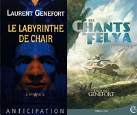 Le Labyrinthe de chair